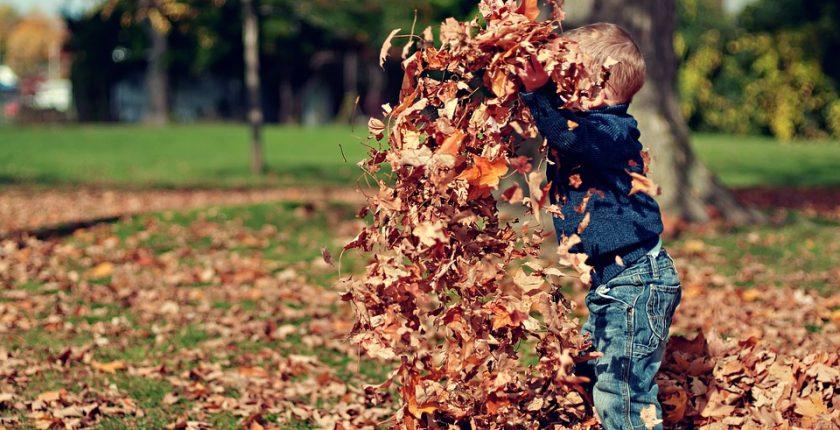 jeu automne